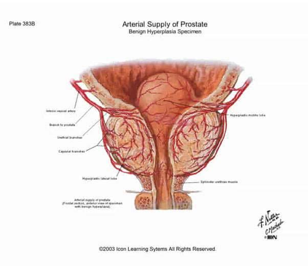Mely pozíciók a legjobbak az erekcióhoz - Az erekciót nem befolyásoló nyomásgyógyszerek