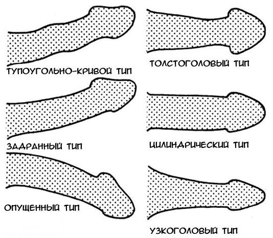 szokatlan alakú péniszek merevedés 3 év alatti gyermekeknél