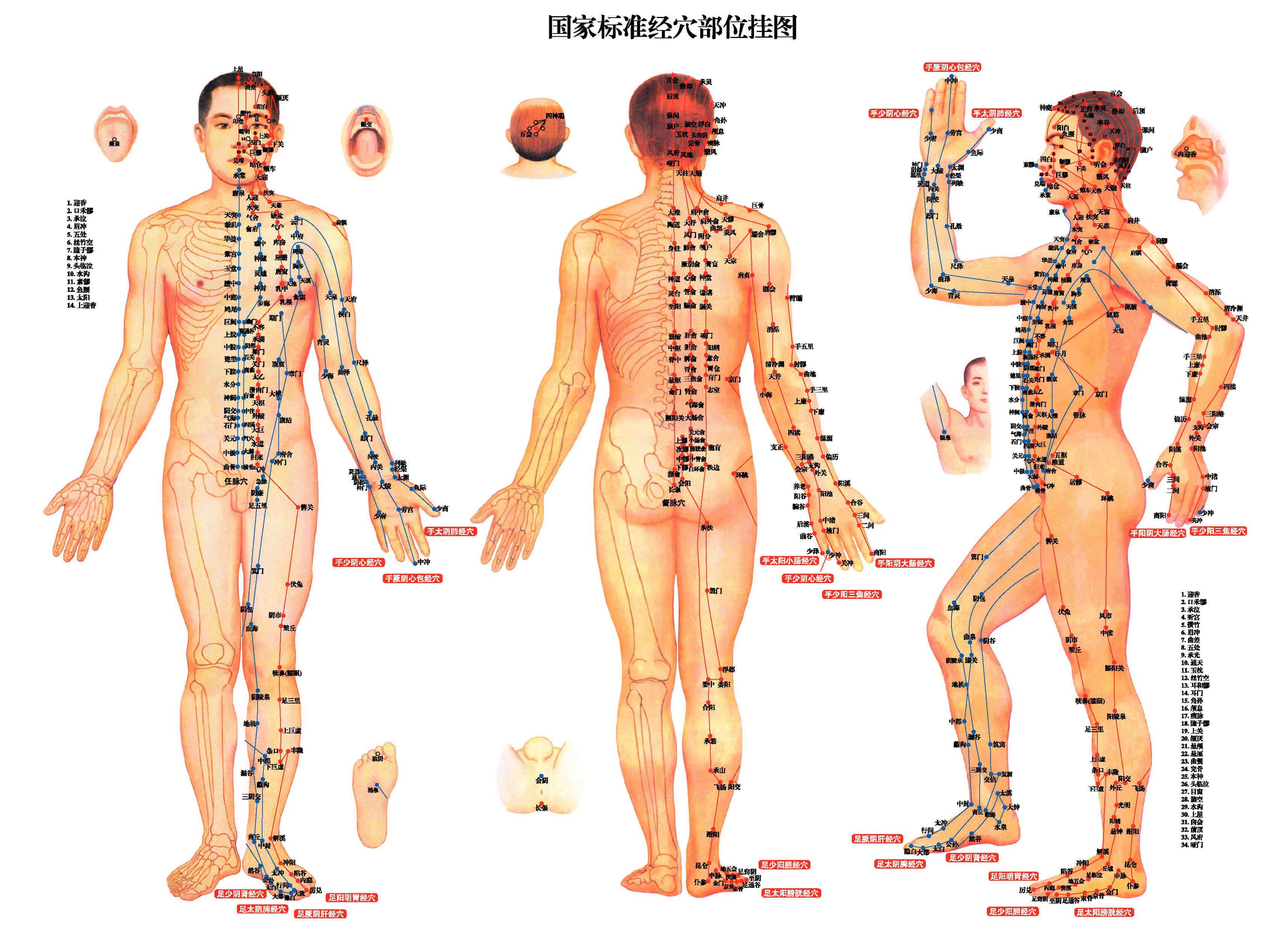 akupunktúrás erekció levágta a péniszét