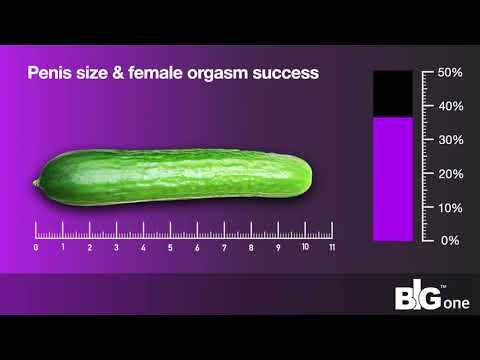 mik a kritériumok a pénisz méretének meghatározásához