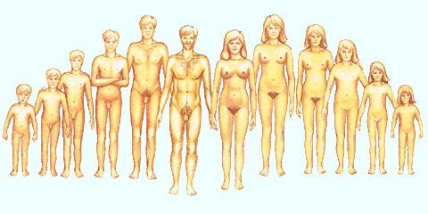 potencia erekciós jóga anális erekció stimulálása