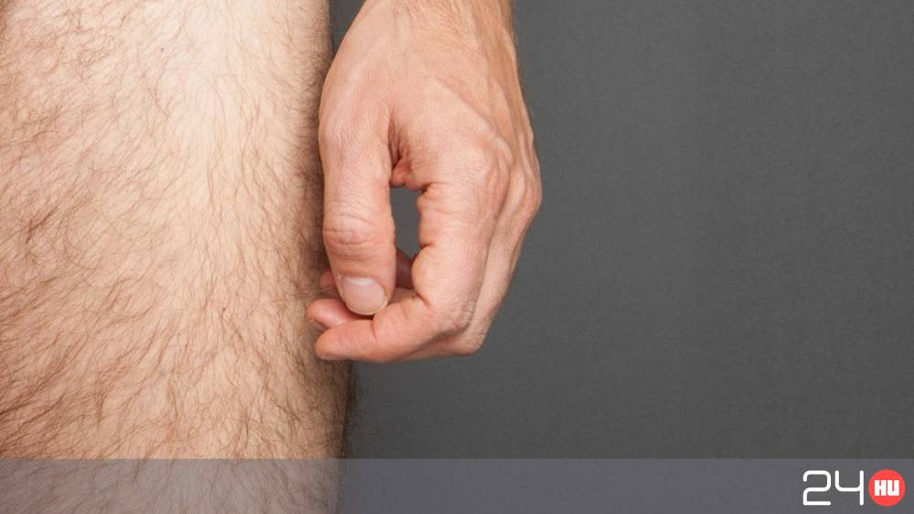 A kéz árulkodik a péniszméretről? | hu