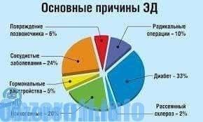 erekció férfiaknál és annak megsértése)