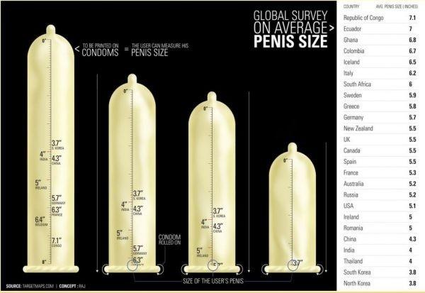 átlagos statisztikai péniszméret)