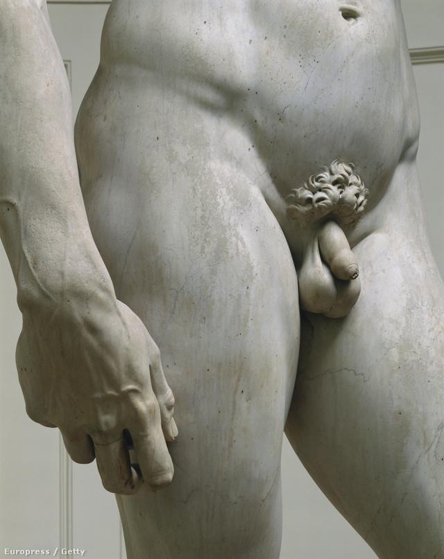 hogyan lehet tudni hogy normális-e a péniszem